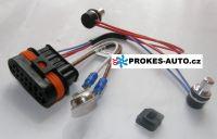 Kabelbaum mit Sensor für D5WZ / D3WZ / D5WS