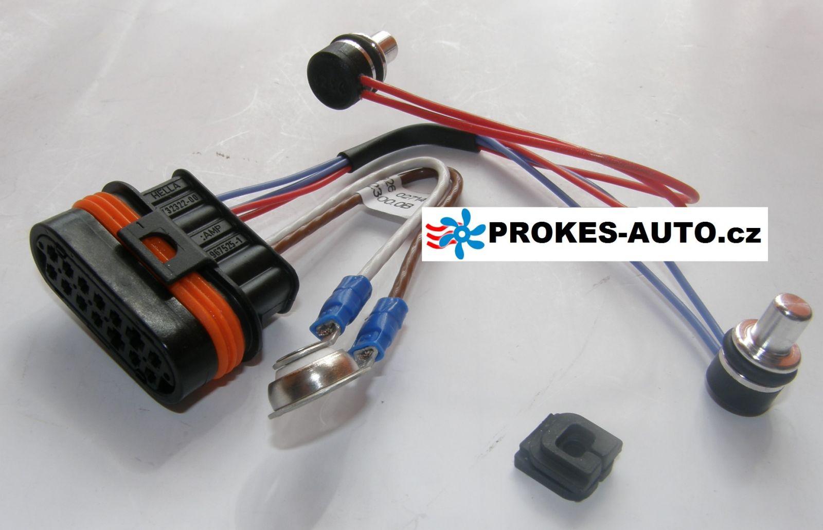 Kabelbaum mit Sensor für D5WZ / D3WZ 251922012000 / 251922012100 / 251922012300 Eberspächer